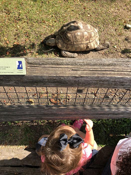 Adi at Zoo
